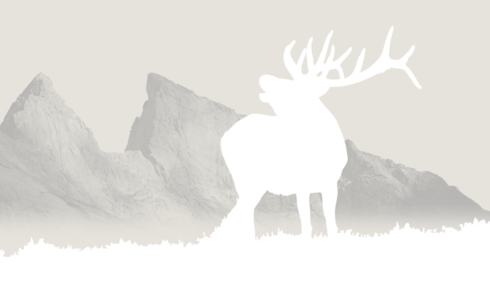 Wind River Elk background